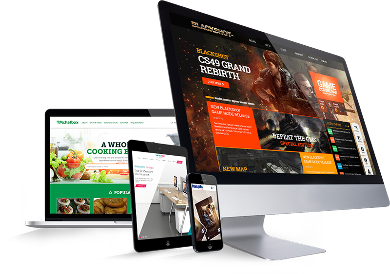 web design services for business and startups